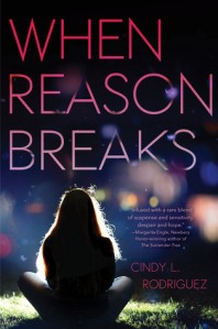 When Reason Breaks